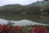 静园_风景图片