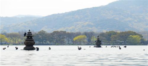 【纯玩】杭州西湖、西溪湿地、乌镇、夜游西塘2日游