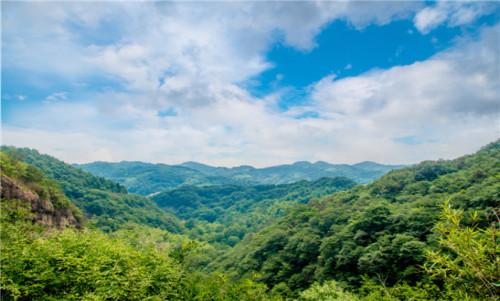 【春季】霍山黄茶园采茶体验、白云峡瀑布群、3D飞云玻璃吊桥1日游