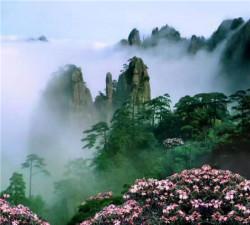 黄山高铁休闲三日游(山下、山上各住1晚)