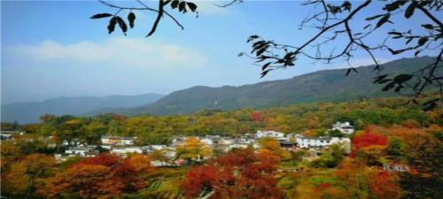 苏州天平山赏枫、千年山塘古街、金鸡湖、虎丘湿地公园2日游