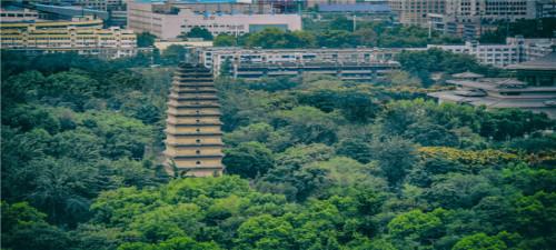【红色延安】西安兵马俑、华清池,黄帝陵轩辕庙双飞5日游