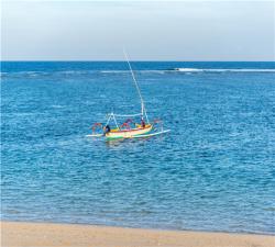 新春【纯玩蓝梦】印尼巴厘岛5晚6日游(合肥直飞,努沙杜瓦海底喷泉)