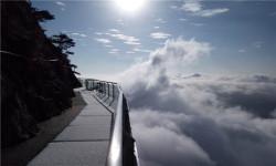 【春季】<岳西明堂山-飞天玻璃桥-高空玻璃栈道1日游>华东第一高空U型玻璃栈道