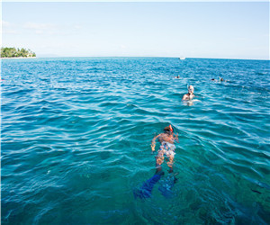 斐济风光2.jpg