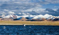 藏地有氧--西藏四飞8日游