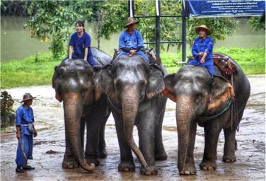 【闪耀沙美】泰国曼谷、芭提雅5晚6日游(芭提雅自由行一日游)