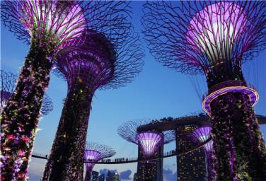 【邮轮】7月28星梦邮轮云顶梦号新加坡-普吉岛7晚8日游