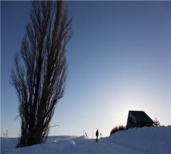 【漫游本州】日本东京、富士山、名古屋、京都本州全景6日游(特别安排温泉酒店)