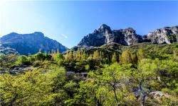 【五一】开封小宋城、万仙山、郭亮村挂壁公路、八里沟天河瀑布3日游