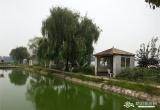 费家渔塘_风景图片