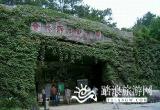 合肥野生动物园