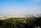 蜀山森林公园_风景图片
