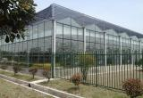 合肥木兰生态农业